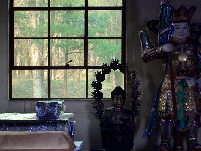 VideoCam Frame No. 08