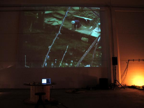 """Zootropio 5/6-11-2011 – Anita Koroktov, """"La crisi di Bluette"""", video, 15'56'', 2010."""