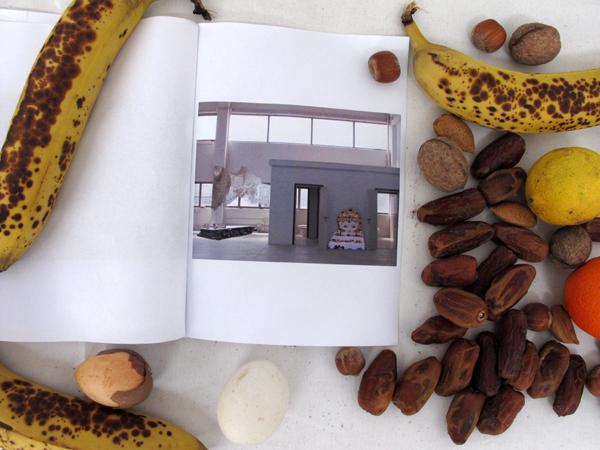 Zootropio – Vênus et Milö, 'Ex-voto', installazione (opuscolo, frutta, semi, uova, latte, cartone), 2011.
