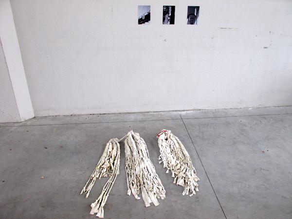 Zootropio - Francesca Pizzo, 'Octopus's Garden', mixed-media (fotografie, tessuto), 2010.