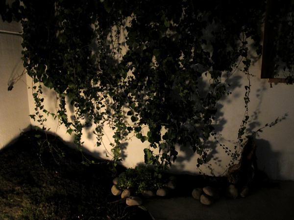 Zootropio 5/6-11-2011 – Vênus et Milö, 'Natura (Orto)', particolare dell'installazione vegetale, 2011.