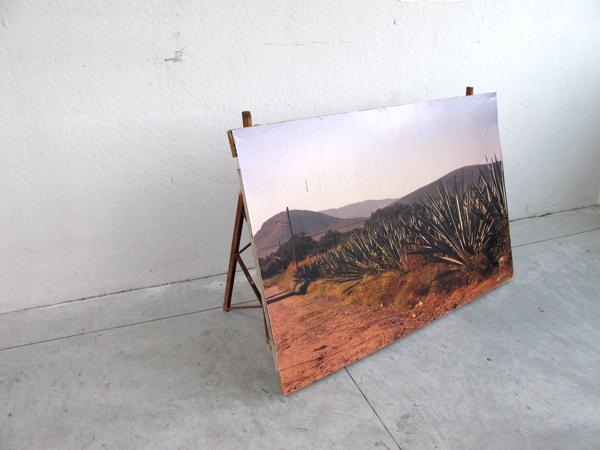 Zootropio – Vênus et Milö, 'Welcome', installazione (cartellone, stampa fotografica), 2011.