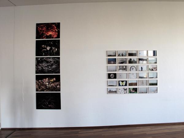 Lavori di Patrizia Zelano, Silvia Camporesi